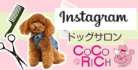COCO RICH ドッグサロン